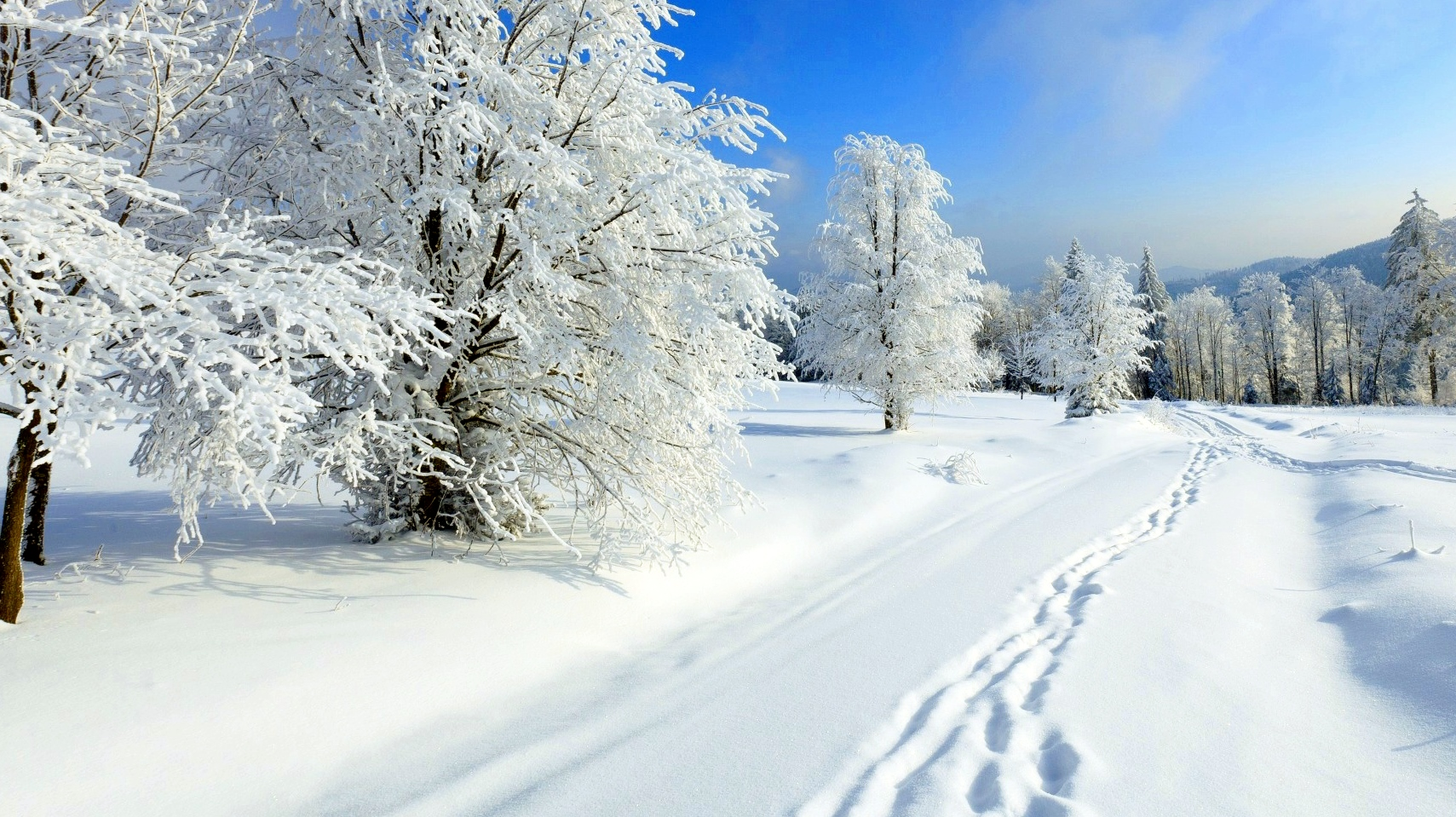 Image result for snijeg